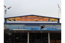 - Architectural Signage - Rigid Signage - Island Adventures Whale Watching - Anacortes, Wa